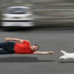 Agila Hundeversicherung 1