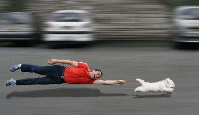 Hundeerziehung Methoden: Welche Ist Die Beste? 1