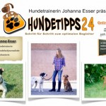 Online Hundetraining Johanna Esser