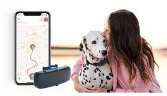Tractive GPS DOG Tracker Erfahrungen