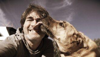 Hund Leckt Alles Ab: Gründe & Lösungen